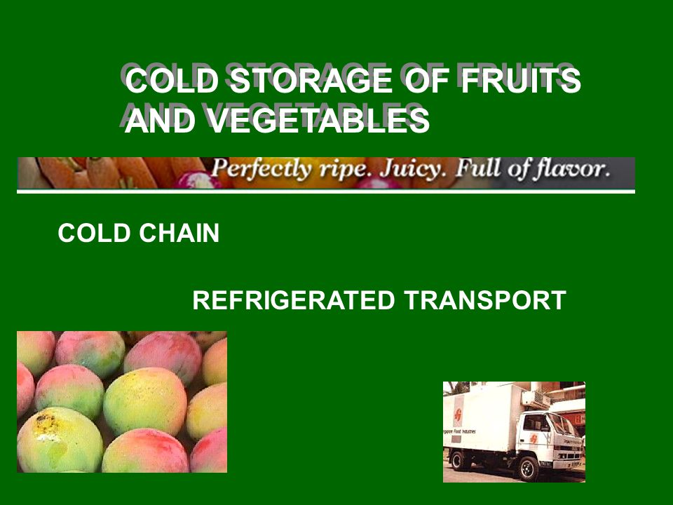 COLD STORAGE OF FRUITS AND VEGETABLES COLD CHAIN REFRIGERATED TRANSPORT