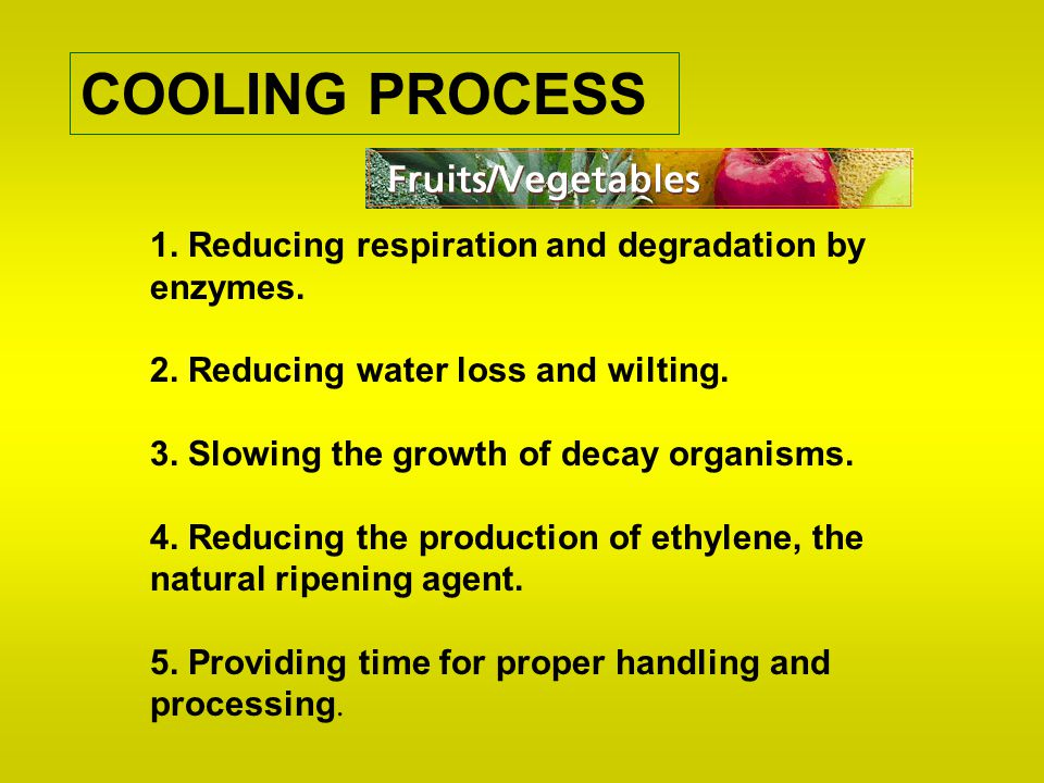 COOLING PROCESS 1. Reducing respiration and degradation by enzymes. 2. Reducing water loss and wilting. 3. Slowing the growth of decay organisms. 4. R