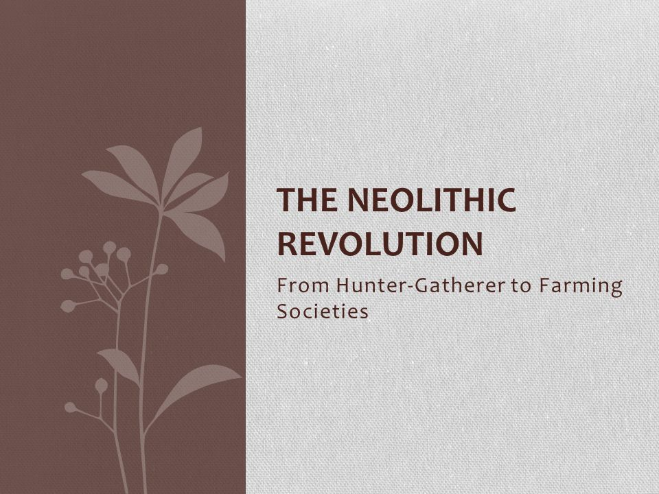 Why was the Neolithic Revolution a major turning point in history? FOCUS QUESTION