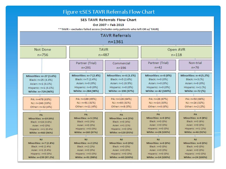 Figure 1:SES TAVR Referrals Flow Chart