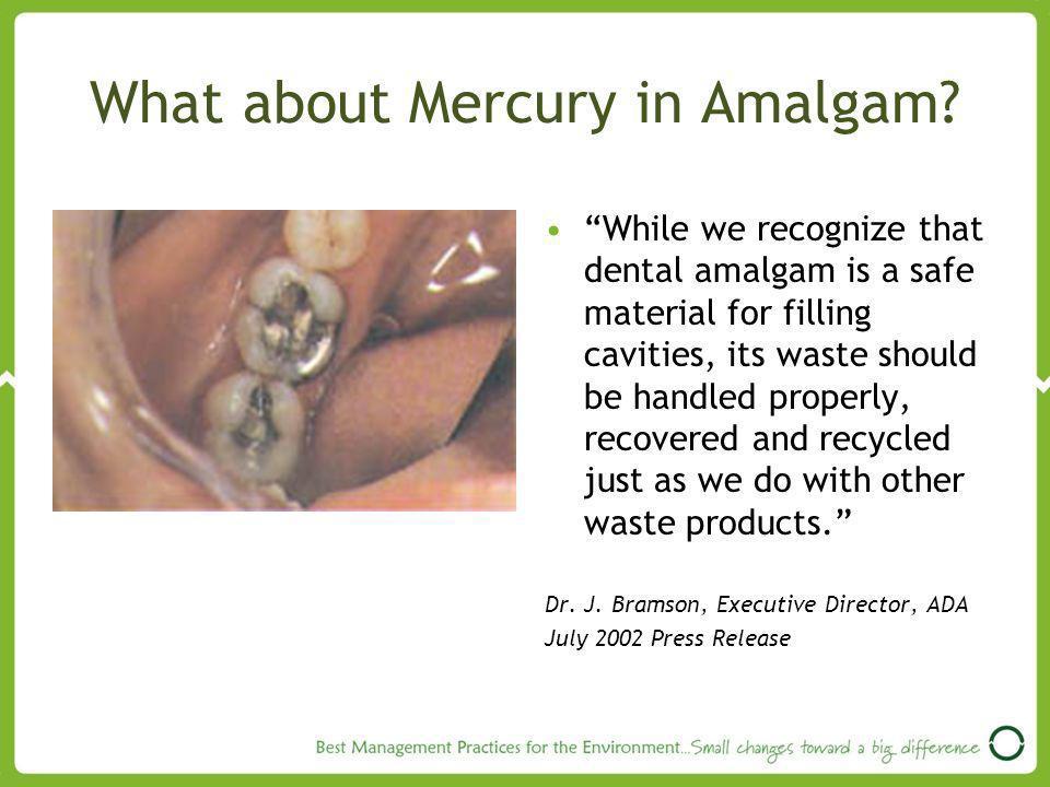What about Mercury in Amalgam.