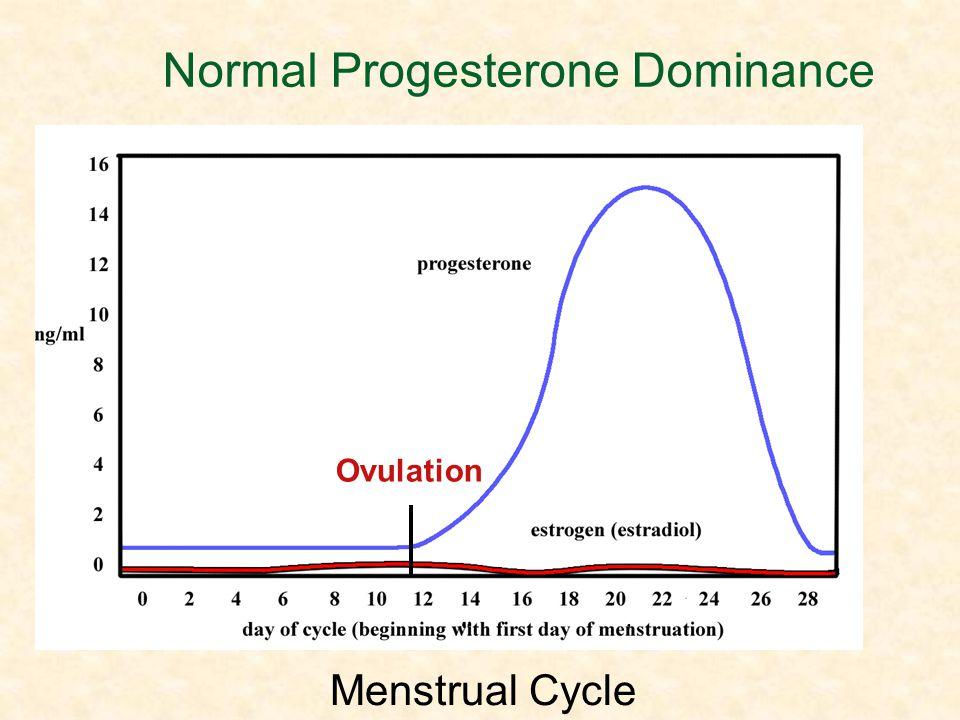Normal Progesterone Dominance Ovulation Menstrual Cycle Ovulation