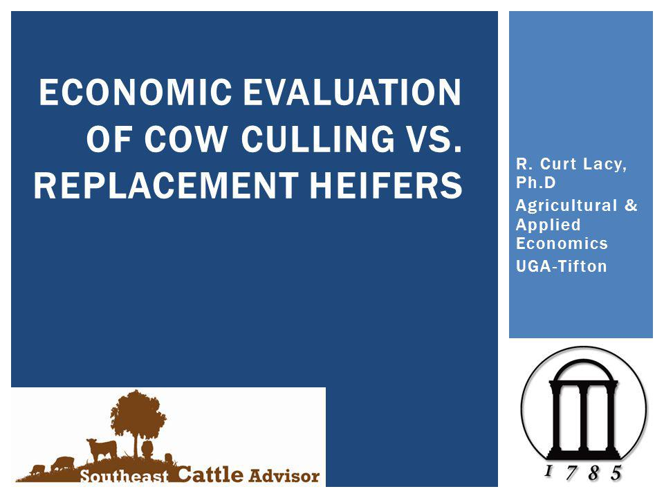 R. Curt Lacy, Ph.D Agricultural & Applied Economics UGA-Tifton ECONOMIC EVALUATION OF COW CULLING VS. REPLACEMENT HEIFERS