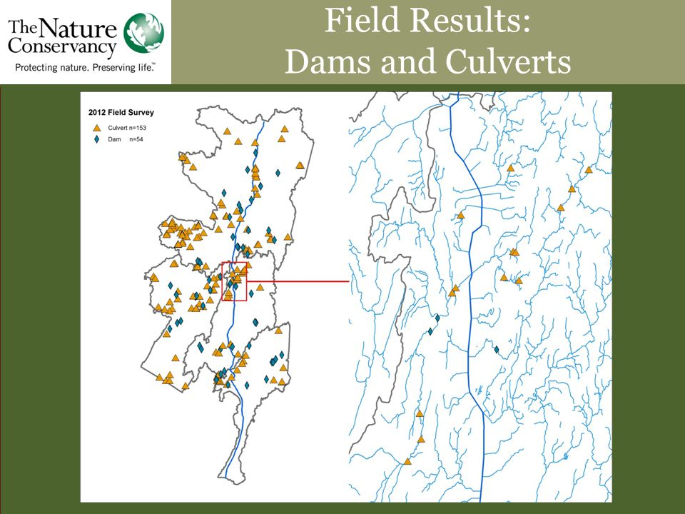 Field Results: Dams and Culverts