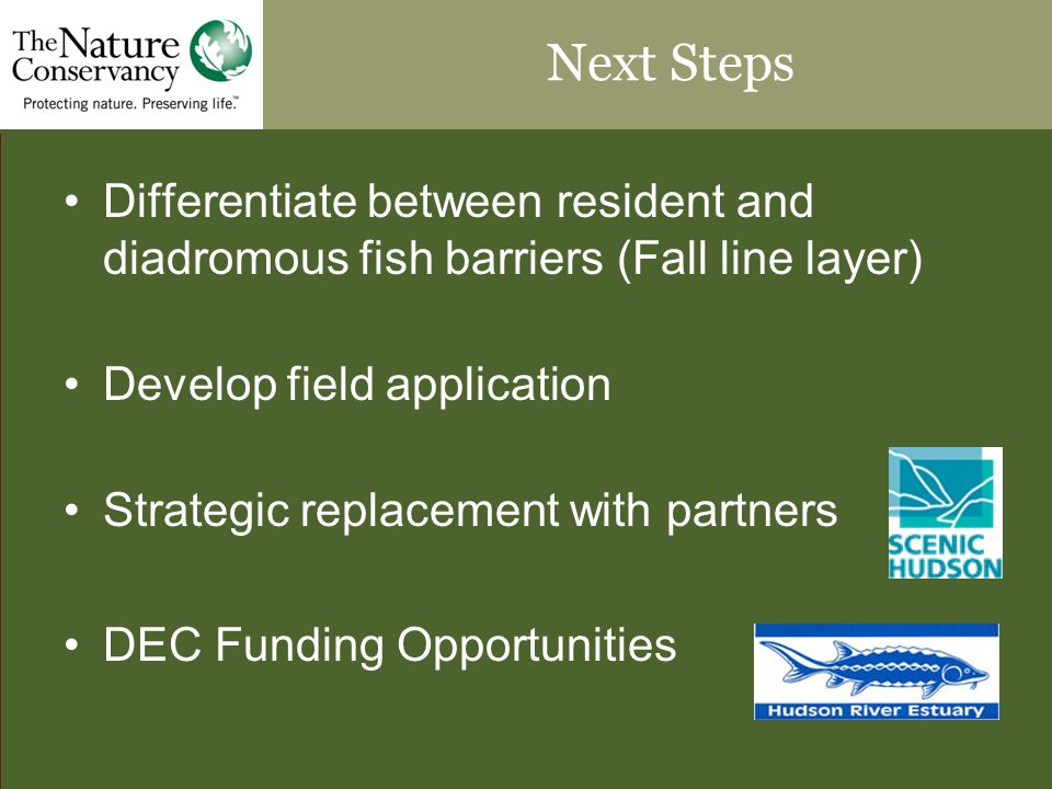 Next Steps Differentiate between resident and diadromous fish barriers (Fall line layer) Develop field application Strategic replacement with partners DEC Funding Opportunities