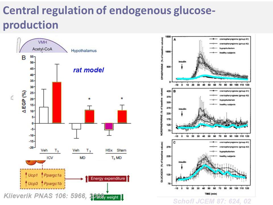 Central regulation of endogenous glucose- production Klieverik PNAS 106: 5966, 2009 Schofl JCEM 87: 624, 02 rat model
