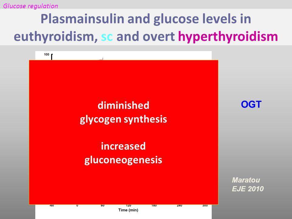 Maratou EJE 2010 OGT Plasmainsulin and glucose levels in euthyroidism, sc and overt hyperthyroidism Glucose regulation diminished glycogen synthesis increased gluconeogenesis