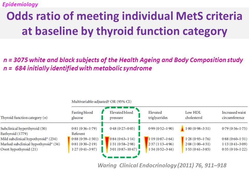 Odds ratio of meeting individual MetS criteria at baseline by thyroid function category Waring Clinical Endocrinology (2011) 76, 911–918 n = 3075 white and black subjects of the Health Ageing and Body Composition study n = 684 initially identified with metabolic syndrome Epidemiology