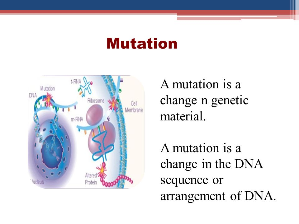 Mutation Hereditary mutation (Germline mutations) Acquired (somatic Mutations)