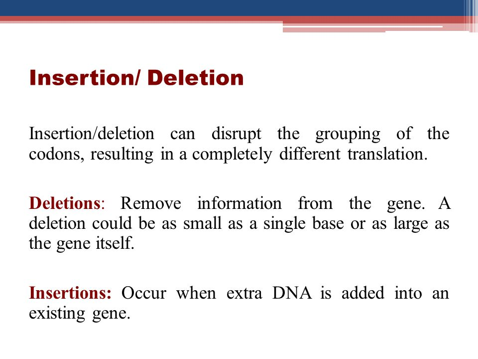 Insertion/ Deletion Insertion/deletion can disrupt the grouping of the codons, resulting in a completely different translation. Deletions: Remove info