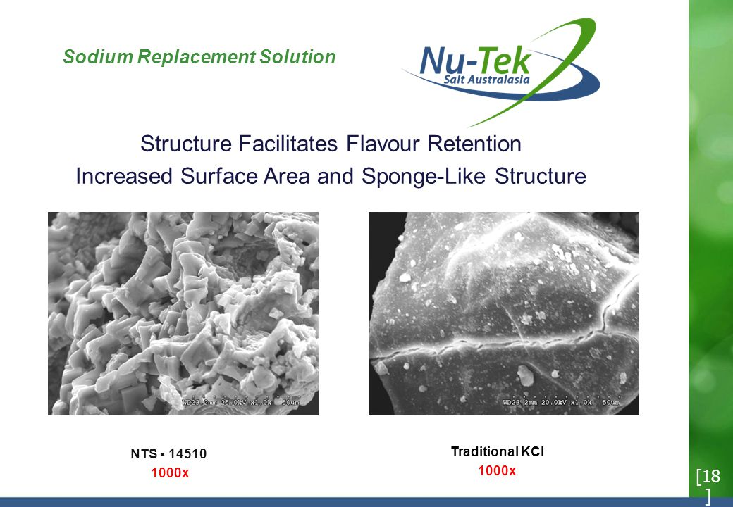 Sodium Replacement Solution Structure Facilitates Flavour Retention Increased Surface Area and Sponge-Like Structure [18 ] NTS - 14510 1000x Traditional KCI 1000x