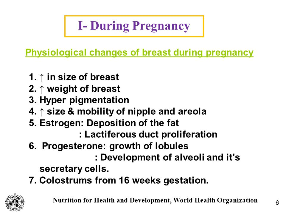 Nutrition for Health and Development, World Health Organization I- During Pregnancy 6 A.