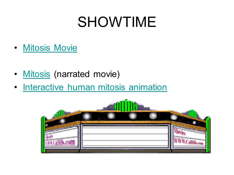 SHOWTIME Mitosis Movie Mitosis (narrated movie)Mitosis Interactive human mitosis animation