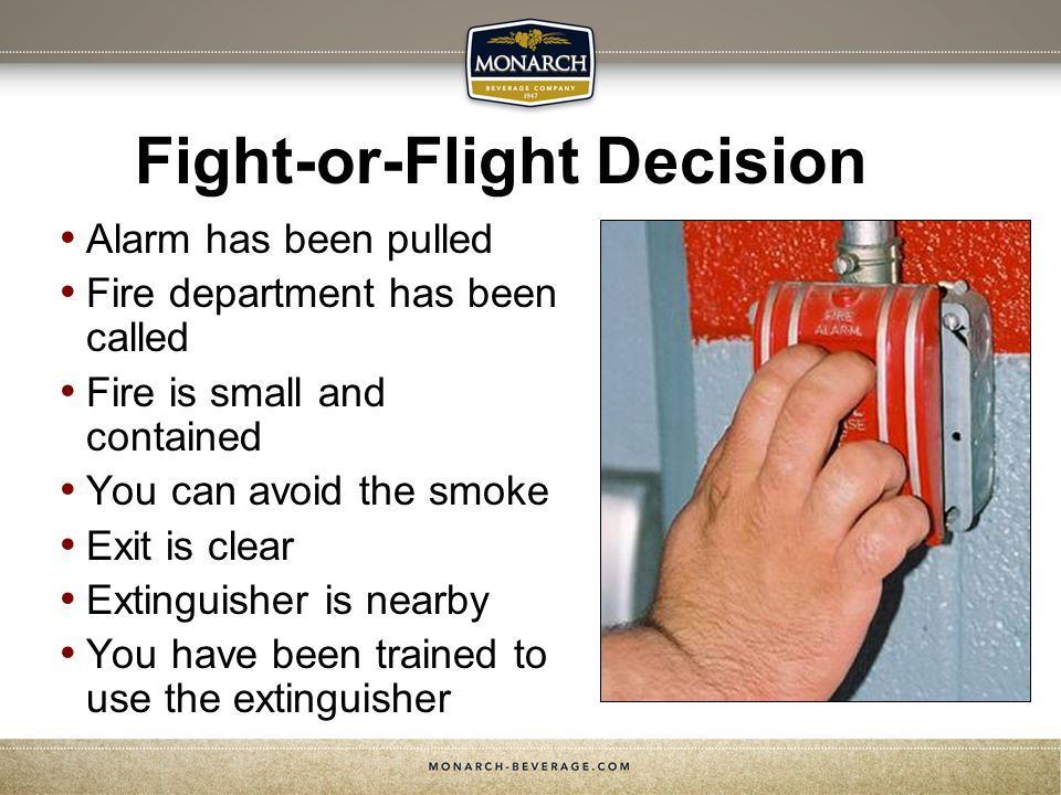 Fight-or-Flight Decision Alarm has been pulled Fire department has been called Fire is small and contained You can avoid the smoke Exit is clear Extinguisher is nearby You have been trained to use the extinguisher