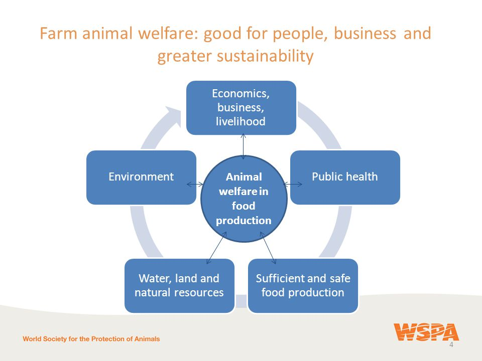 4 Farm animal welfare: good for people, business and greater sustainability Economics, business, livelihood Public health Sufficient and safe food production Water, land and natural resources Environment Animal welfare in food production
