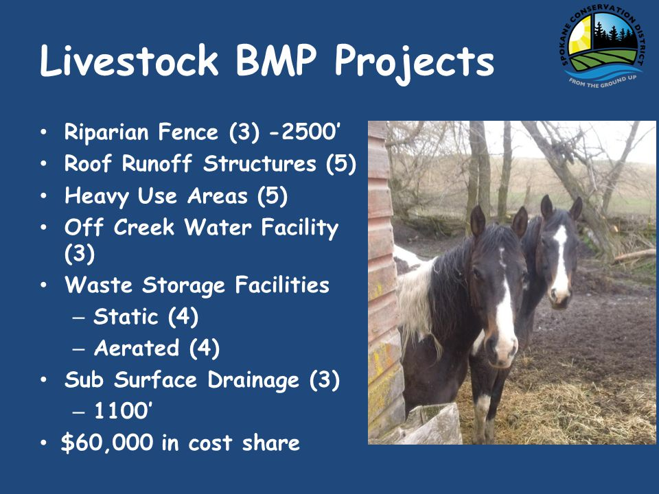 Livestock BMP Projects Riparian Fence (3) Roof Runoff Structures (5) Heavy Use Areas (5) Off Creek Water Facility (3) Waste Storage Facilities – Static (4) – Aerated (4) Sub Surface Drainage (3) – 1100 $60,000 in cost share