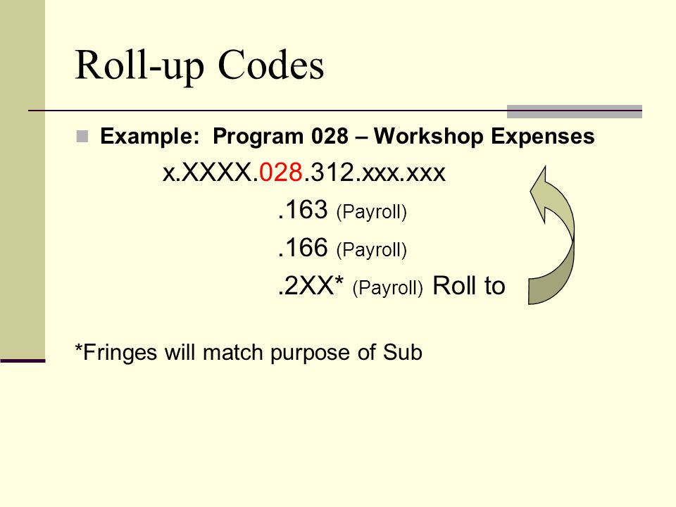 Roll-up Codes Example: Program 028 – Workshop Expenses x.XXXX.028.312.xxx.xxx.163 (Payroll).166 (Payroll).2XX* (Payroll) Roll to *Fringes will match p