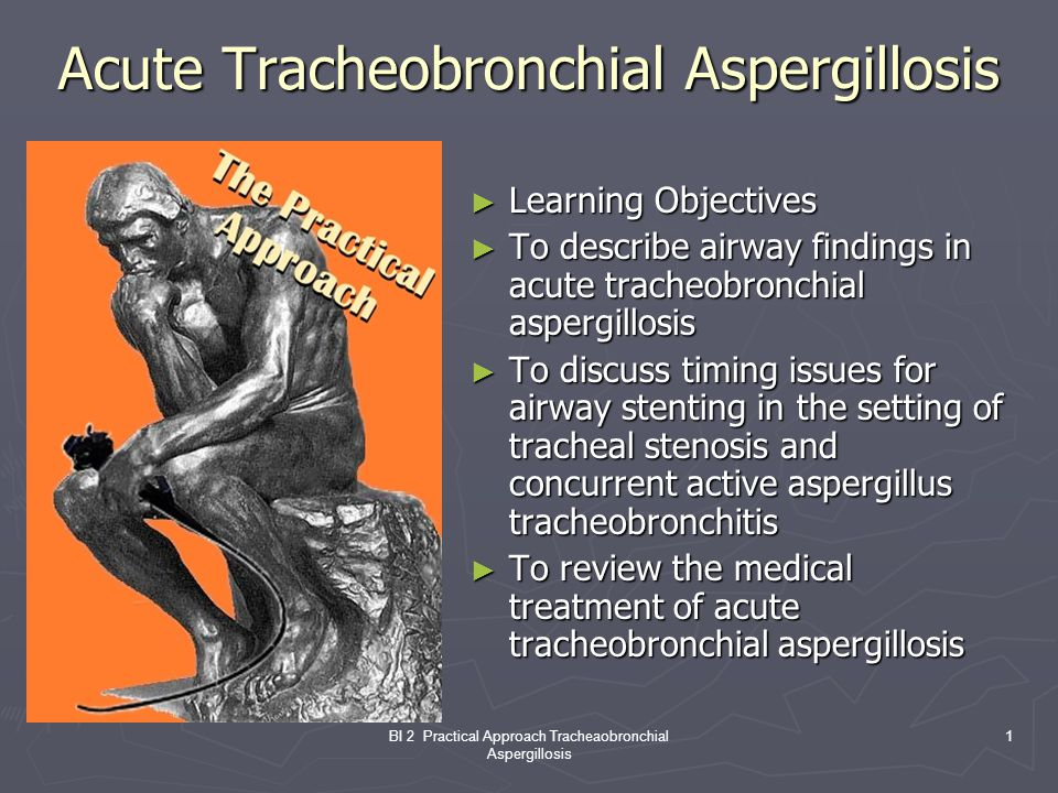 BI 2 Practical Approach Tracheaobronchial Aspergillosis 1 Acute Tracheobronchial Aspergillosis Learning Objectives Learning Objectives To describe airway findings in acute tracheobronchial aspergillosis To describe airway findings in acute tracheobronchial aspergillosis To discuss timing issues for airway stenting in the setting of tracheal stenosis and concurrent active aspergillus tracheobronchitis To discuss timing issues for airway stenting in the setting of tracheal stenosis and concurrent active aspergillus tracheobronchitis To review the medical treatment of acute tracheobronchial aspergillosis To review the medical treatment of acute tracheobronchial aspergillosis
