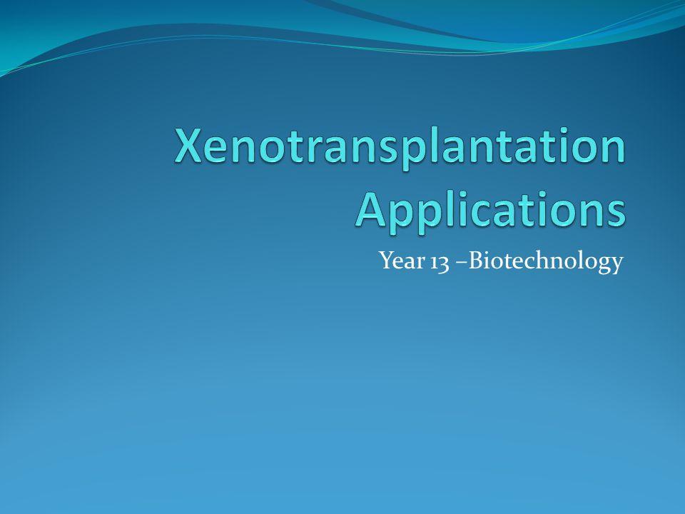 Year 13 –Biotechnology