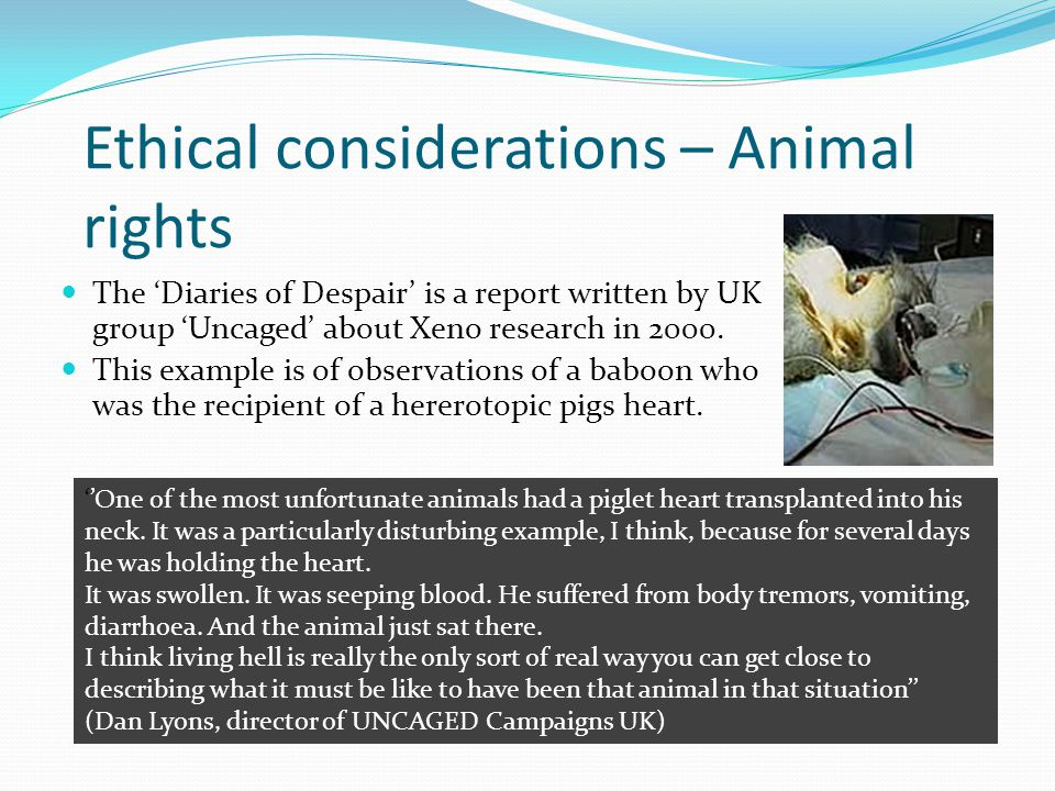 Ethical considerations – Animal rights The Diaries of Despair is a report written by UK group Uncaged about Xeno research in 2000.