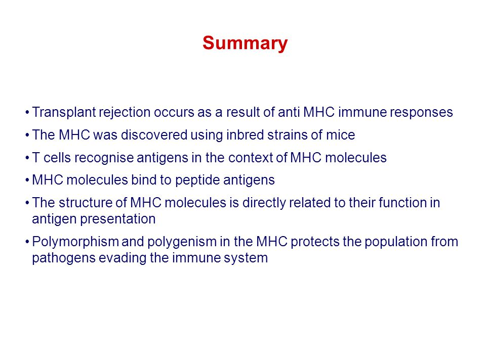 Transplant rejection occurs as a result of anti MHC immune responses The MHC was discovered using inbred strains of mice T cells recognise antigens in