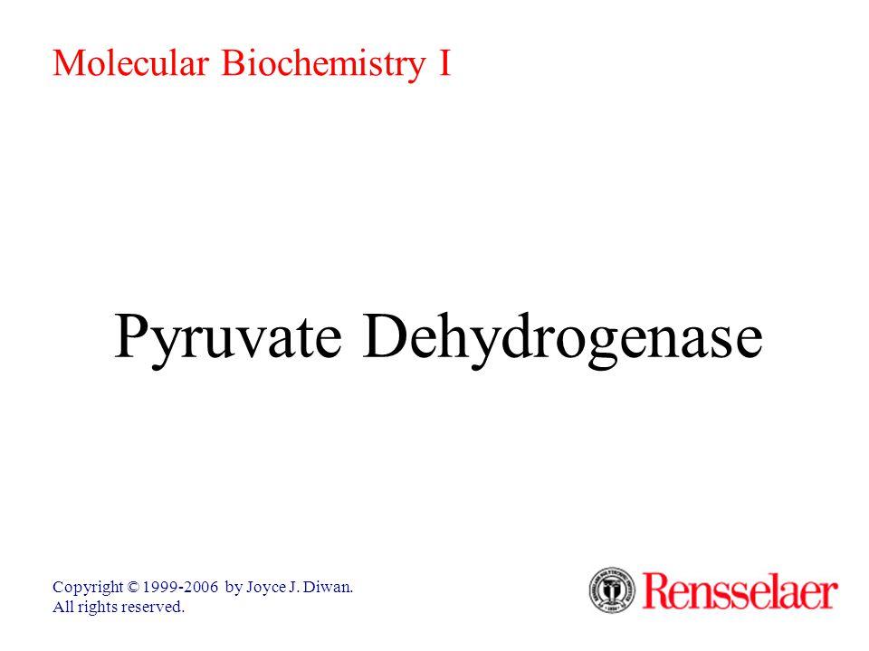 Pyruvate Dehydrogenase Copyright © 1999-2006 by Joyce J. Diwan. All rights reserved. Molecular Biochemistry I