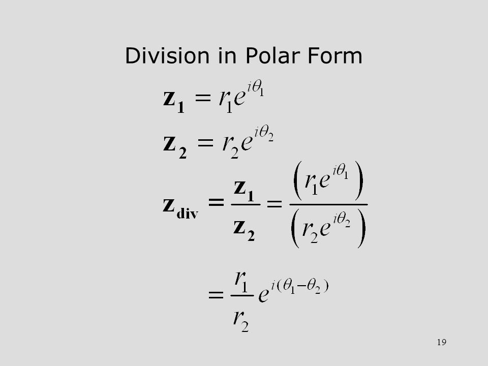 19 Division in Polar Form