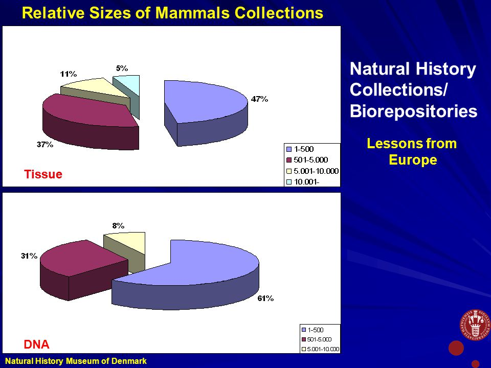 Relative Sizes of Mammals Collections Tissue DNA Natural History Collections/ Biorepositories Natural History Museum of Denmark Lessons from Europe