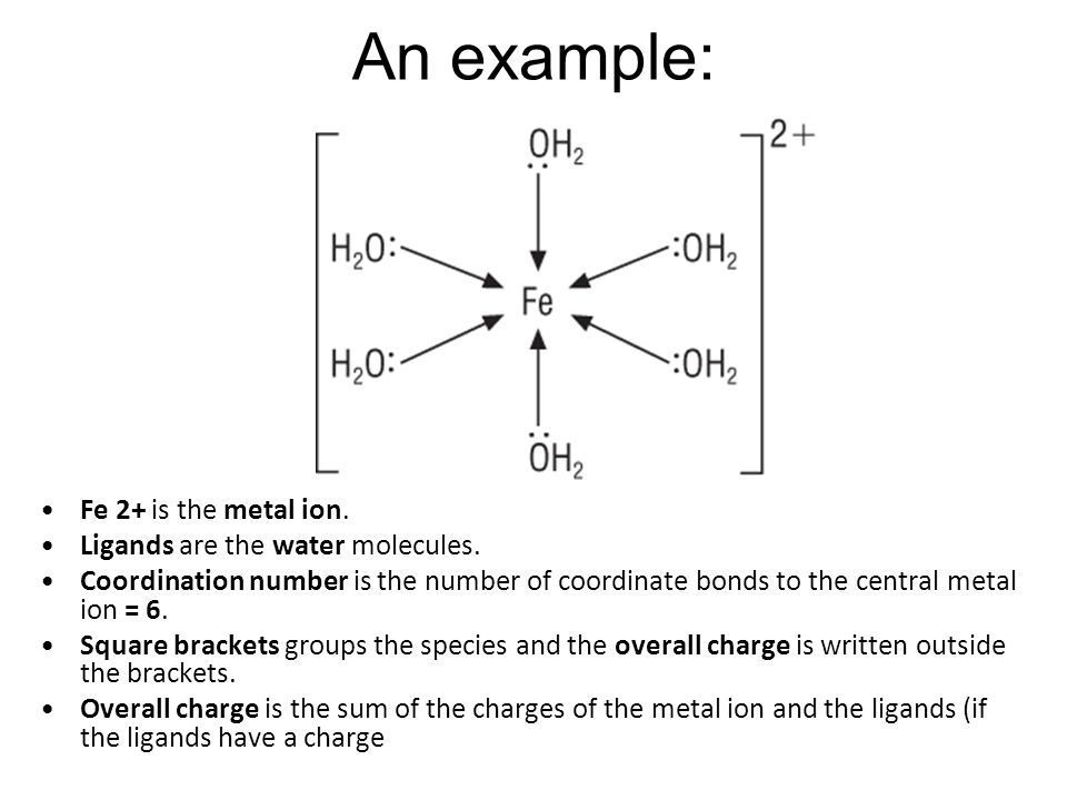 An example: Fe 2+ is the metal ion.Ligands are the water molecules.