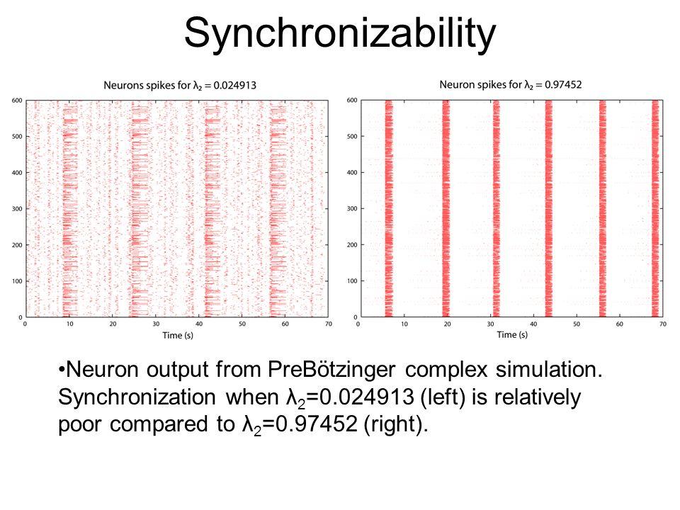 Synchronizability Neuron output from PreBötzinger complex simulation.