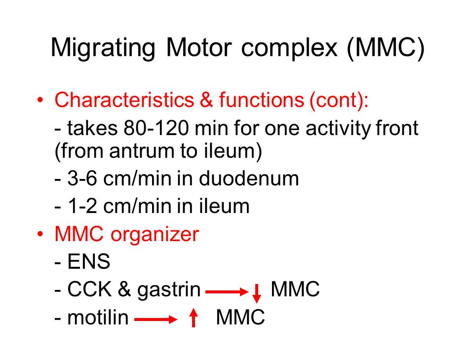 Migrating Motor complex (MMC) Cycling of the MMC continues until it is ended by the ingestion of food Termination requires the physical presence of a meal in the upper digestive tract Vagal efferent signals to ENS interrupt the MMC and initiate mixing motility during ingestion of a meal After vagus nerves are cut, a large quantity of ingested food is necessary to interrupt the interdigestive motor pattern (MMC), and the interruption is often incomplete Intravenous feeding does not end the fasting pattern