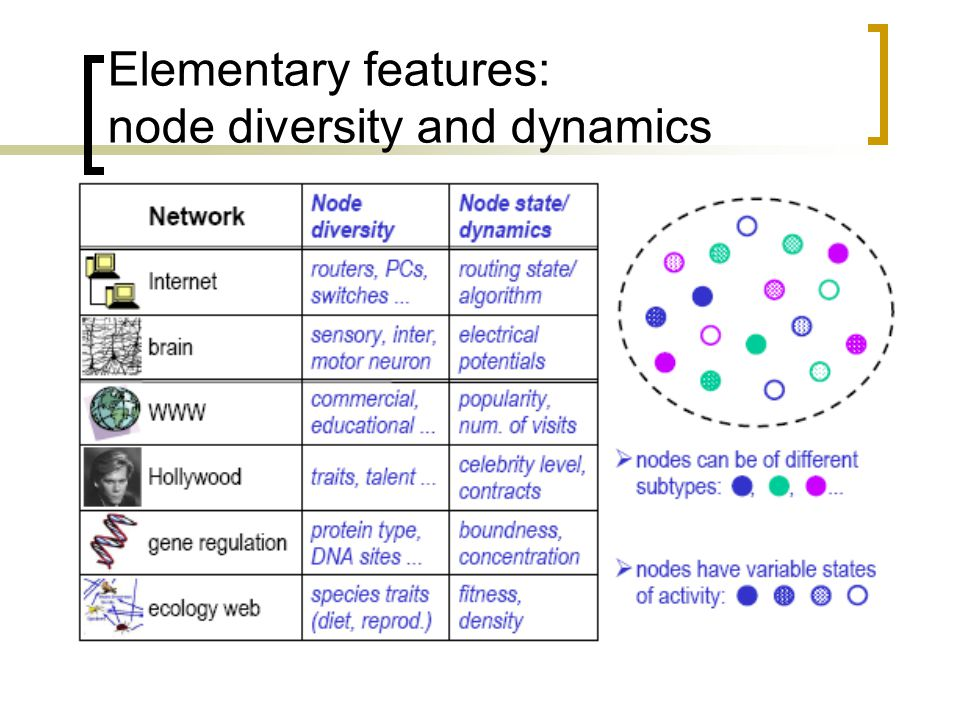 Elementary features: node diversity and dynamics