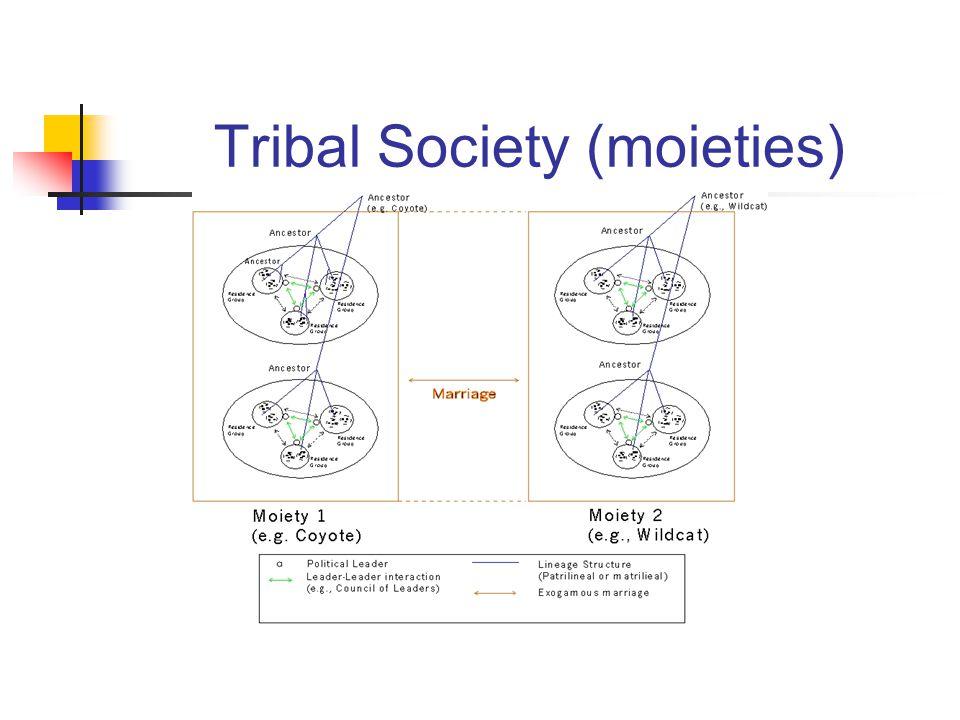 Tribal Society (moieties)