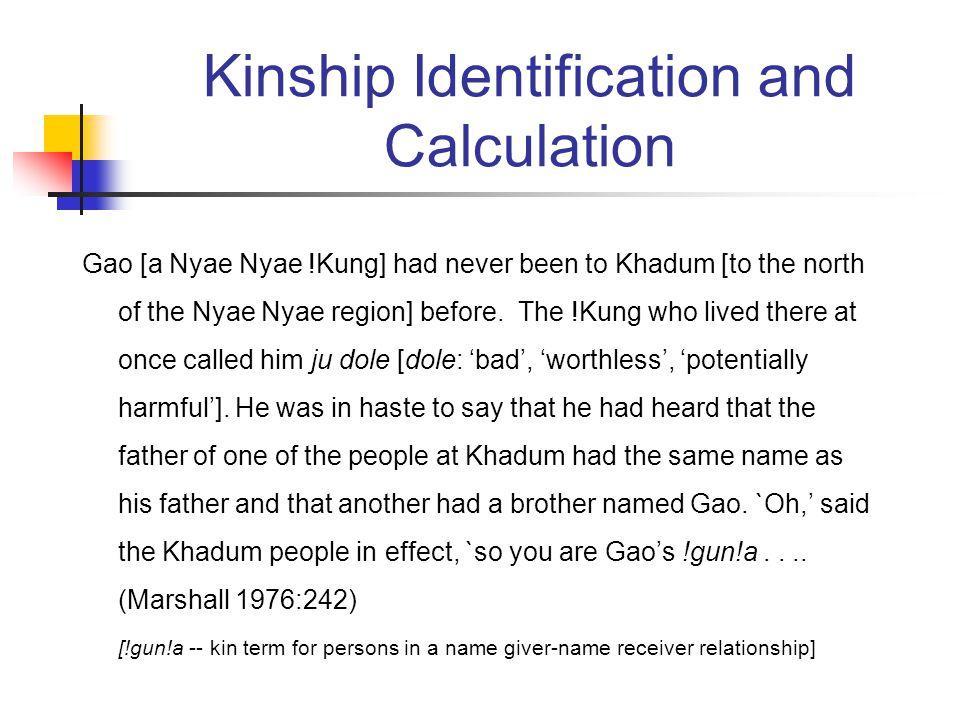 Kinship Identification and Calculation Gao [a Nyae Nyae !Kung] had never been to Khadum [to the north of the Nyae Nyae region] before.