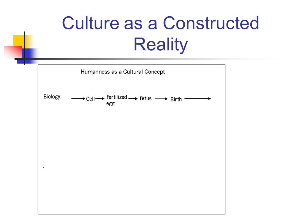 Culture as a Constructed Reality