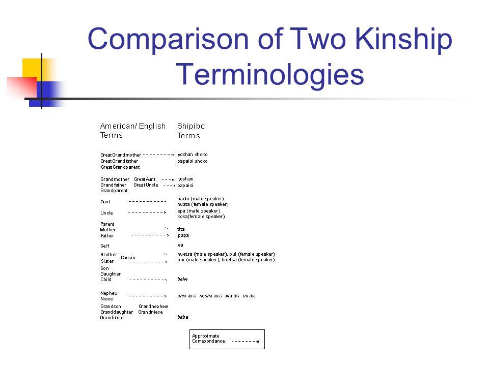 Comparison of Two Kinship Terminologies