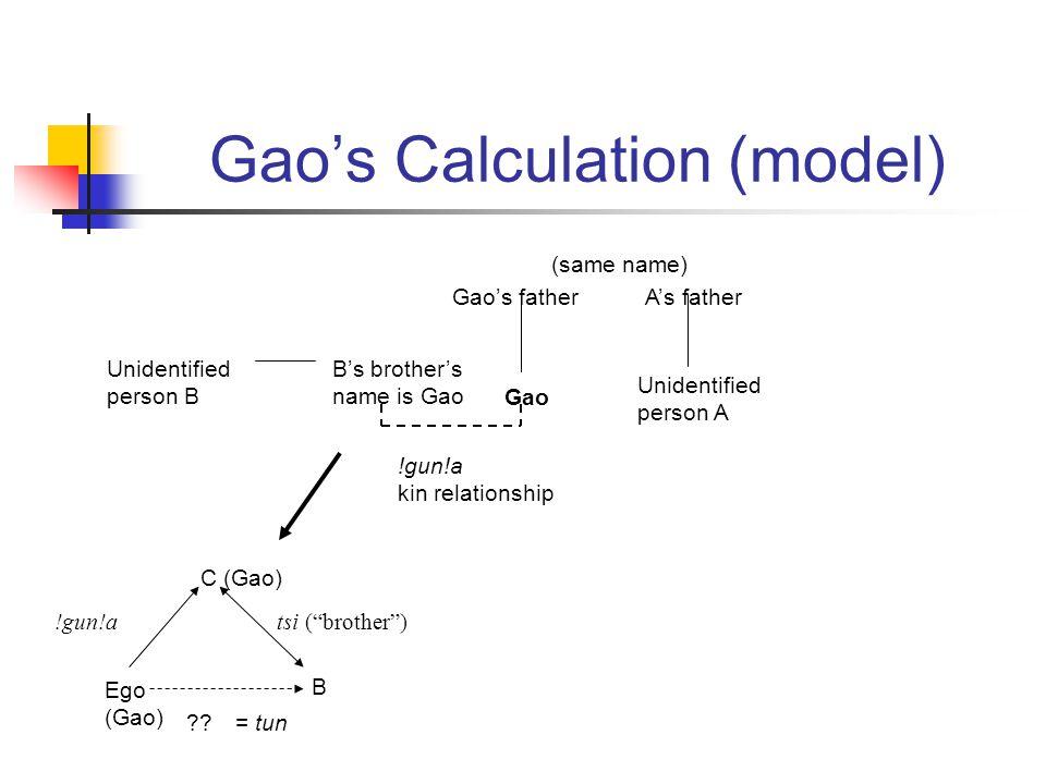 Gaos Calculation (model) Gao Gaos father Unidentified person A As father Unidentified person B Bs brothers name is Gao (same name) !gun!a kin relationship Ego (Gao) C (Gao) B tsi (brother)!gun!a = tun