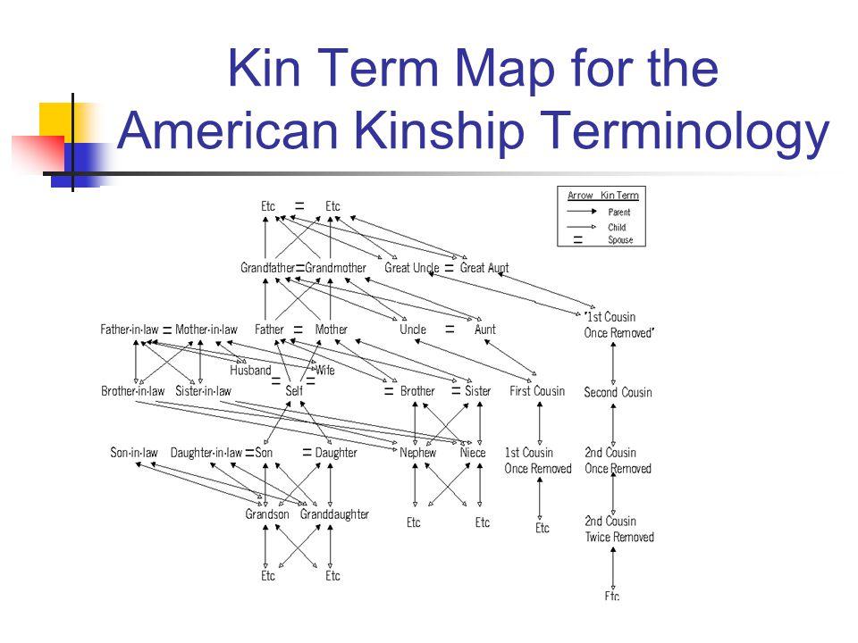 Kin Term Map for the American Kinship Terminology