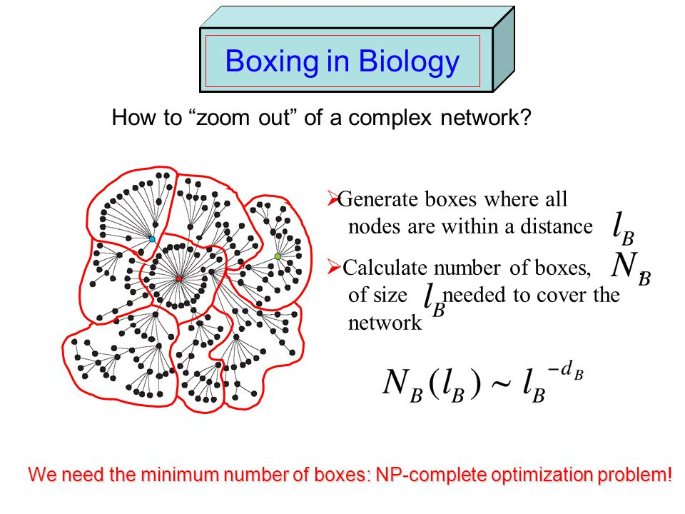 Boxing in Biology How to zoom out of a complex network.