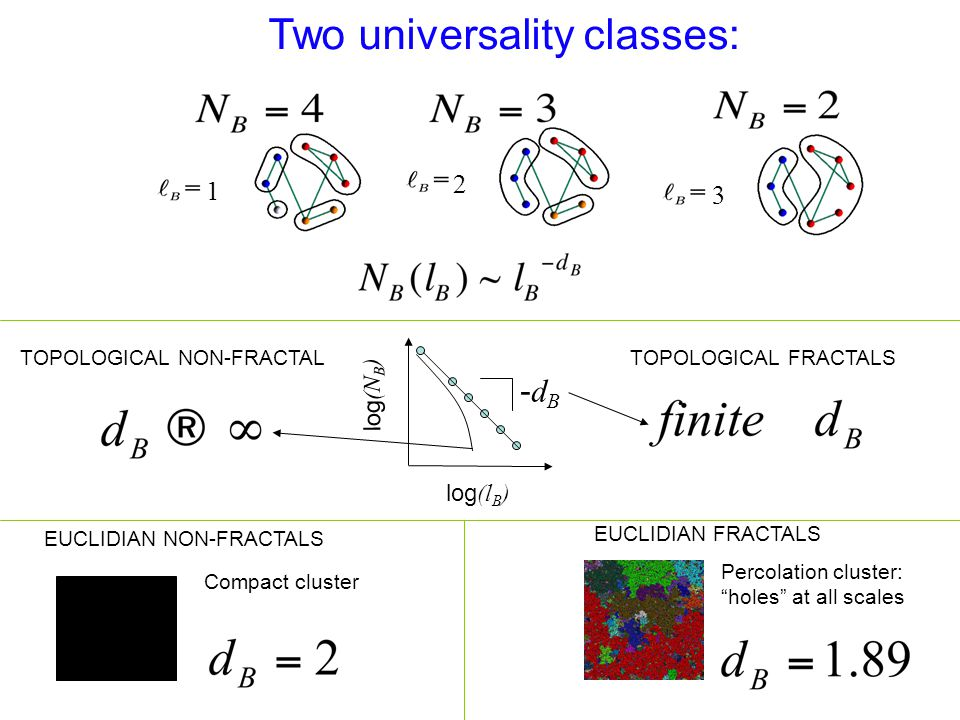 Two universality classes: -dB-dB log (l B ) log (N B ) TOPOLOGICAL NON-FRACTALTOPOLOGICAL FRACTALS EUCLIDIAN NON-FRACTALS EUCLIDIAN FRACTALS Percolation cluster: holes at all scales Compact cluster