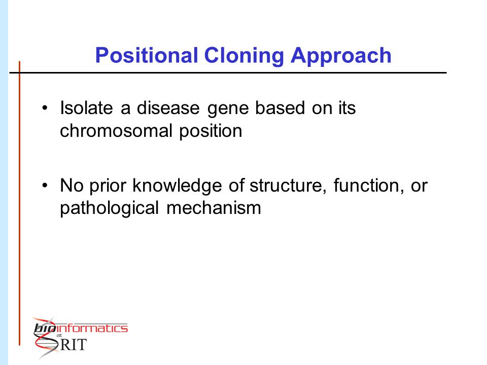 Positional Cloning Approach Isolate a disease gene based on its chromosomal position No prior knowledge of structure, function, or pathological mechan