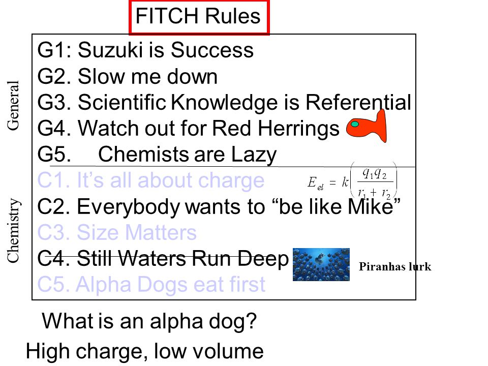 FITCH Rules G1: Suzuki is Success G2.Slow me down G3.