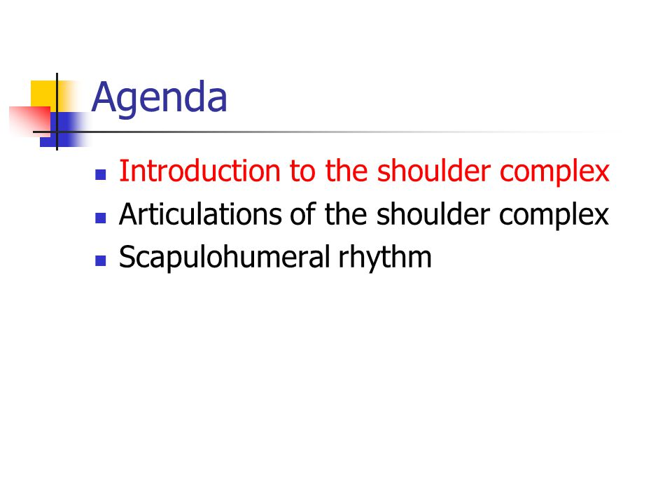 Agenda Introduction to the shoulder complex Articulations of the shoulder complex Scapulohumeral rhythm