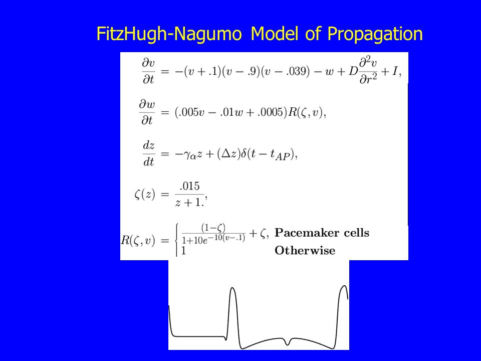 FitzHugh-Nagumo Model of Propagation