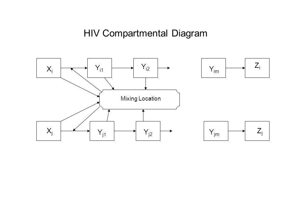 HIV Compartmental Diagram Mixing Location XiXi XjXj Y i1 Y i2 Y j1 Y j2 Y im Y jm ZiZi ZjZj