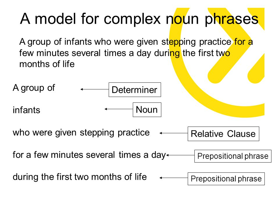 A model for complex noun phrases A group of infants who were given stepping practice for a few minutes several times a day during the first two months of life A group of infants who were given stepping practice for a few minutes several times a day during the first two months of life DeterminerNounRelative Clause Prepositional phrase