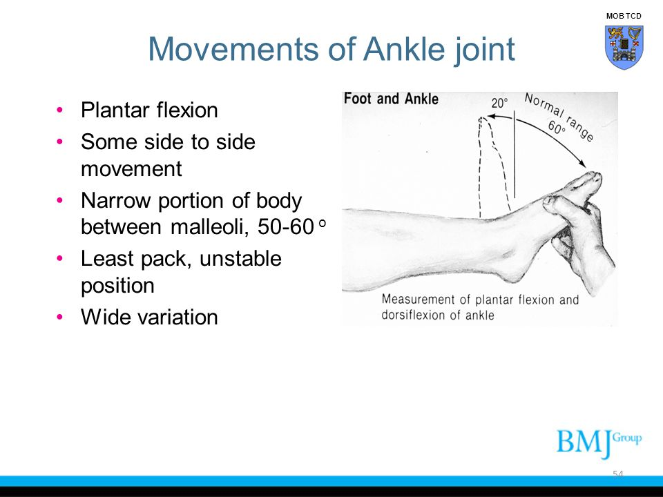 Movements of Ankle joint Plantar flexion Some side to side movement Narrow portion of body between malleoli, 50-60 o Least pack, unstable position Wid