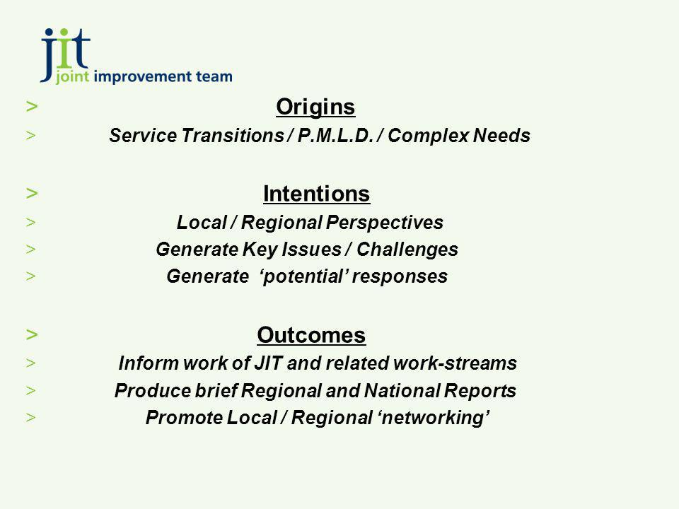 > Origins > Service Transitions / P.M.L.D. / Complex Needs > Intentions > Local / Regional Perspectives > Generate Key Issues / Challenges > Generate