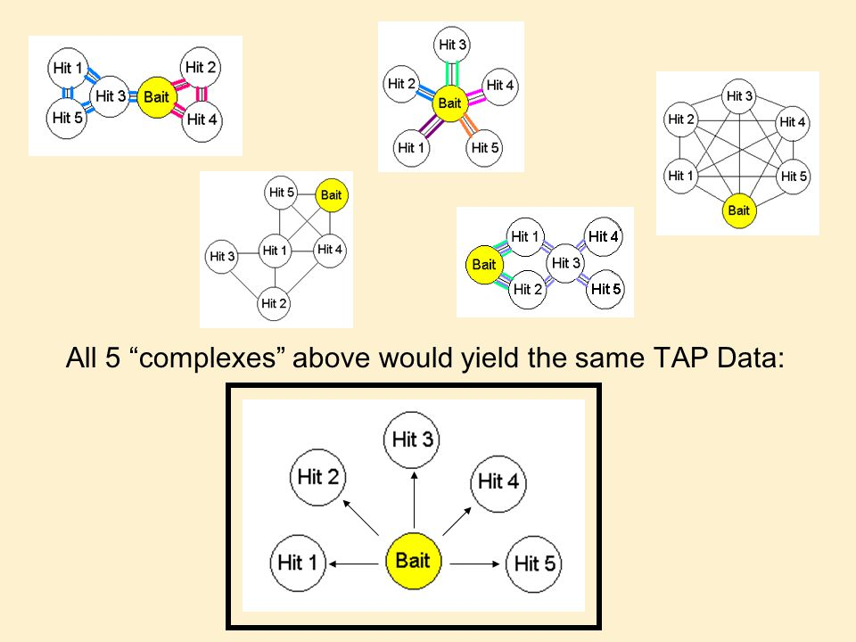 All 5 complexes above would yield the same TAP Data: