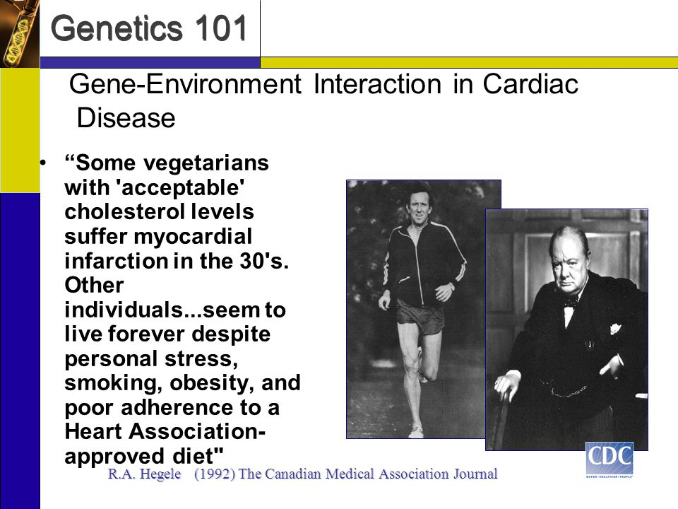 Genetics 101 Gene-Environment Interaction in Cardiac Disease Some vegetarians with 'acceptable' cholesterol levels suffer myocardial infarction in the